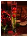 Centrais de mesa de florsubmersa